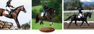 Custom Saddlery at New Era Farm - Aiken, SC