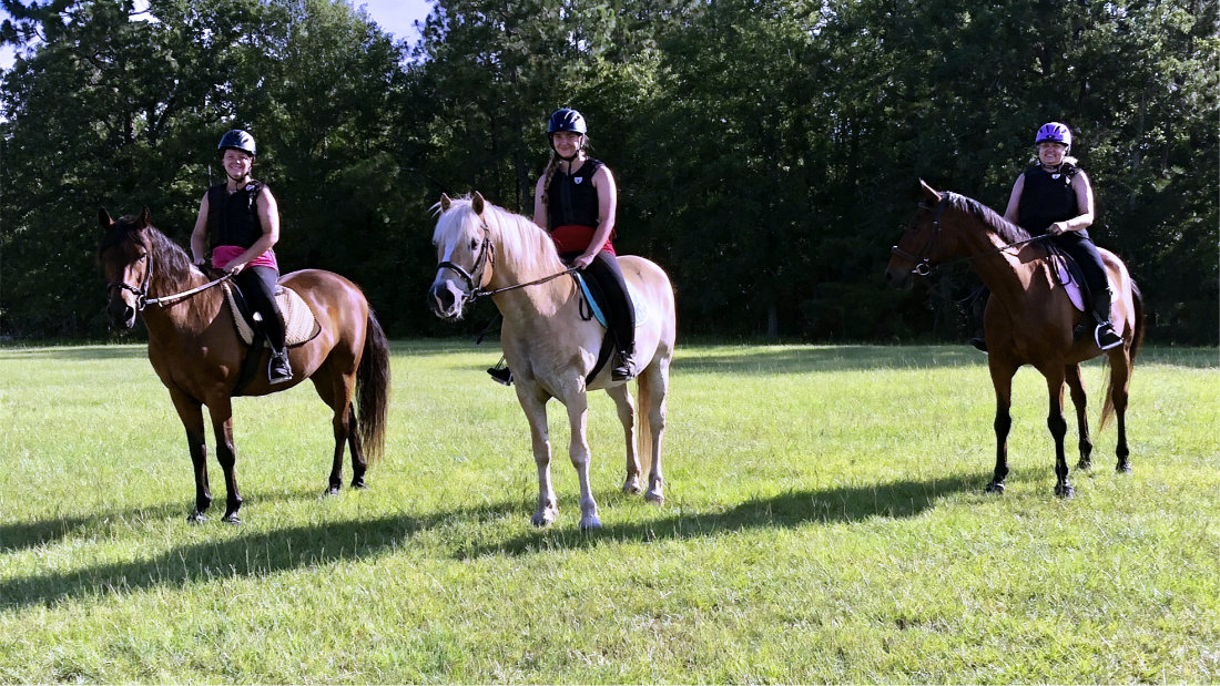 Horse riding lessons for adults and children in Aiken, South Carolina