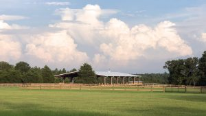 Horse Training - New Era Farm - Aiken, SC