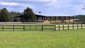 Covered Arena and Horse Training - New Era Farm - Aiken, SC