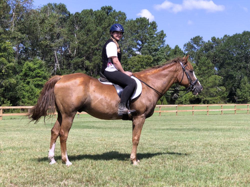 New Era Farm has reliable lesson horses.